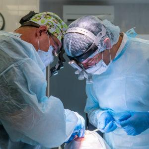 п. 4 - иплантация.рдс